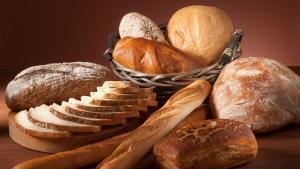 El que has de saber sobre la nova norma del pa aprovada pel Govern
