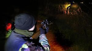 Batida nocturna para cazar jabalís, en el Empordà.