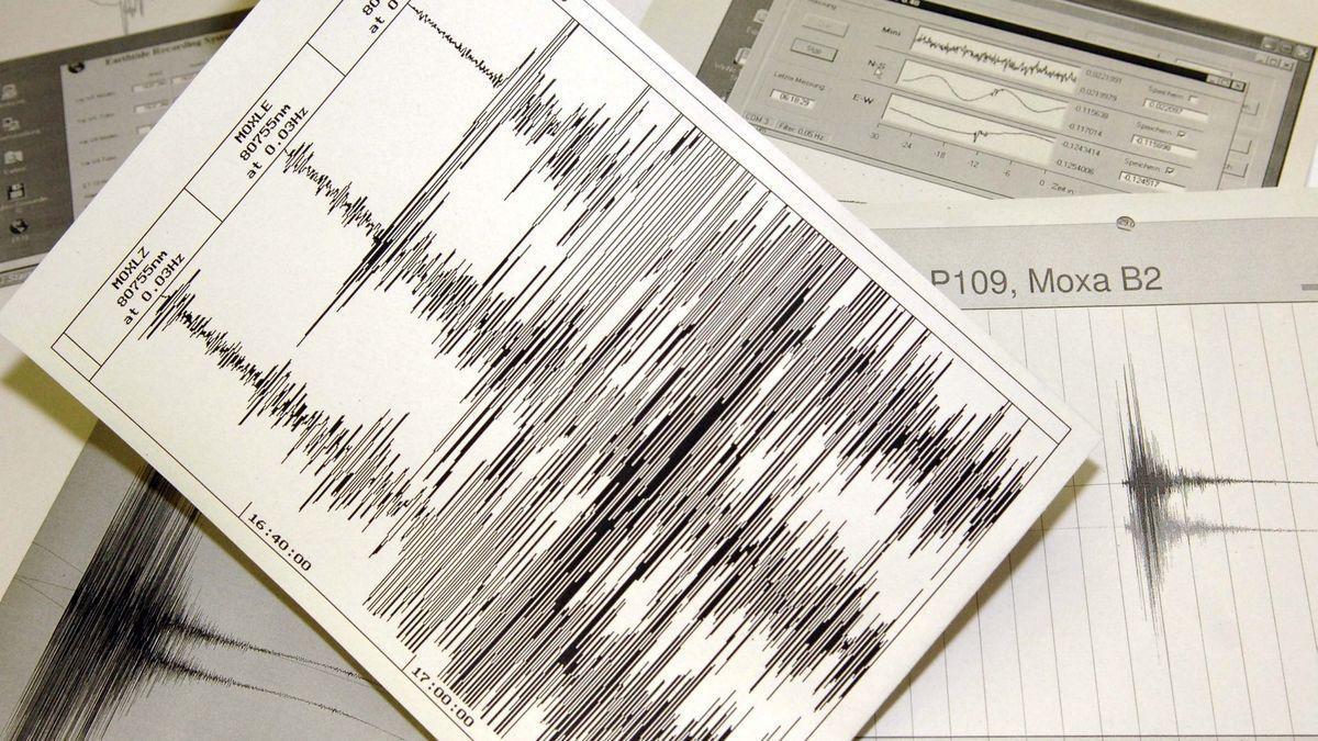 Imagen sismográfica del temblor.