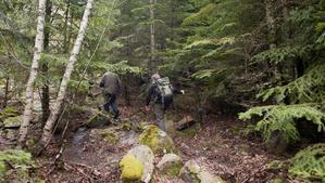 El Parc Natural de l'Alt Pirineu regularà l'afluència de turistes aquest estiu
