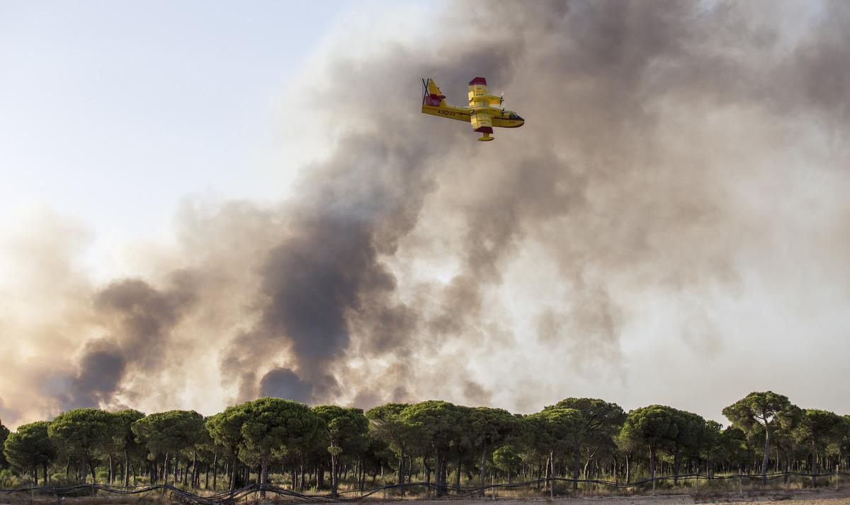Una avioneta participa en las labores de extinción de unincendio en Huelva, en el parque de Doñana.