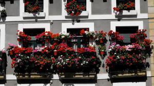 Balcones floreados en la plaza de Armas de la localidad guipuzcoana de Hondarribia.