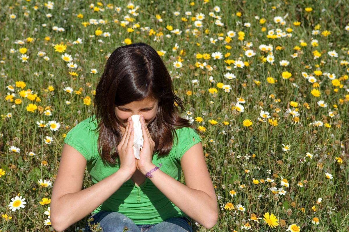 Llega la primavera: consejos para combatir la alergia al polen
