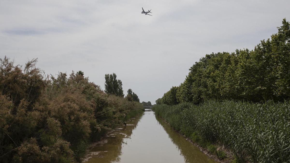 Un avión con destino a Miami sobrevuela los dominios del delta del Llobregat tras despegar desde la tercera pista de El Prat