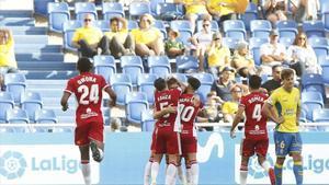 Los jugadores de la UD Almería celebran un gol esta temporada