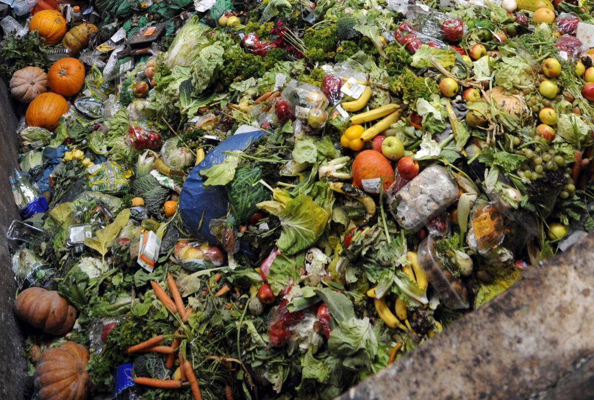 El 40% de los alimentos producidos en el mundo acaba en la basura