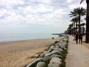 Mataró tendrá una playa para perros este verano por primera vez