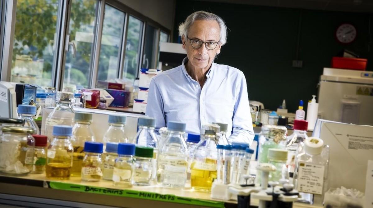 El doctor Bonaventura Clotet en el laboratorio de investigación IrsiCaixa, situado e el Hospital Germans Trias i Pujol, de Badalona.