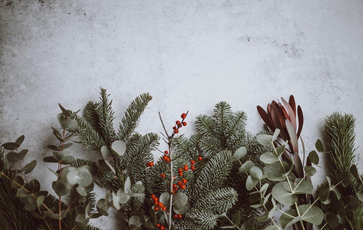 Calcular las cantidades de alimento o mantener la nevera cerrada son algunas de las recomendaciones para una navidad 'verde'.