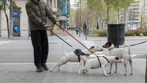 Se podrá pasear al perro durante el toque de queda solo en algunos casos.