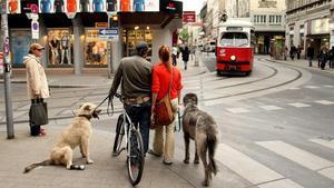 Una calle de Viena.
