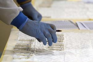 En la imagendetalle de prueba PCR.
