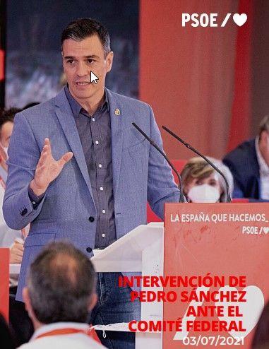 Intervención del presidente del Gobierno, Pedro Sánchez, ante el comité federal del PSOE, este 3 de julio de 2021.