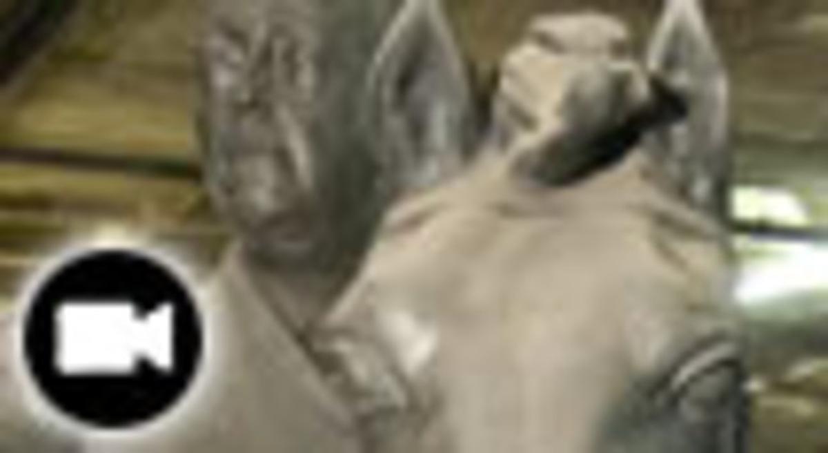 Detalle de la estatua de Franco.
