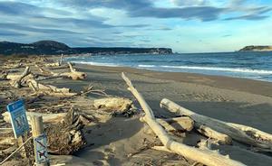 La Gola del Ter con restos y sedimentos arrastrados por el temporal 'Gloria' un año después.