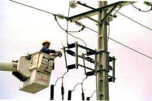 Un equip tècnic repara un pal d'electricitat.