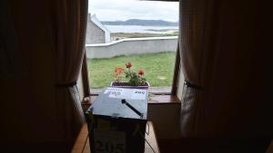 Urna electoral en la isla irlandesa de Gola con motivo de los comicios europeos.