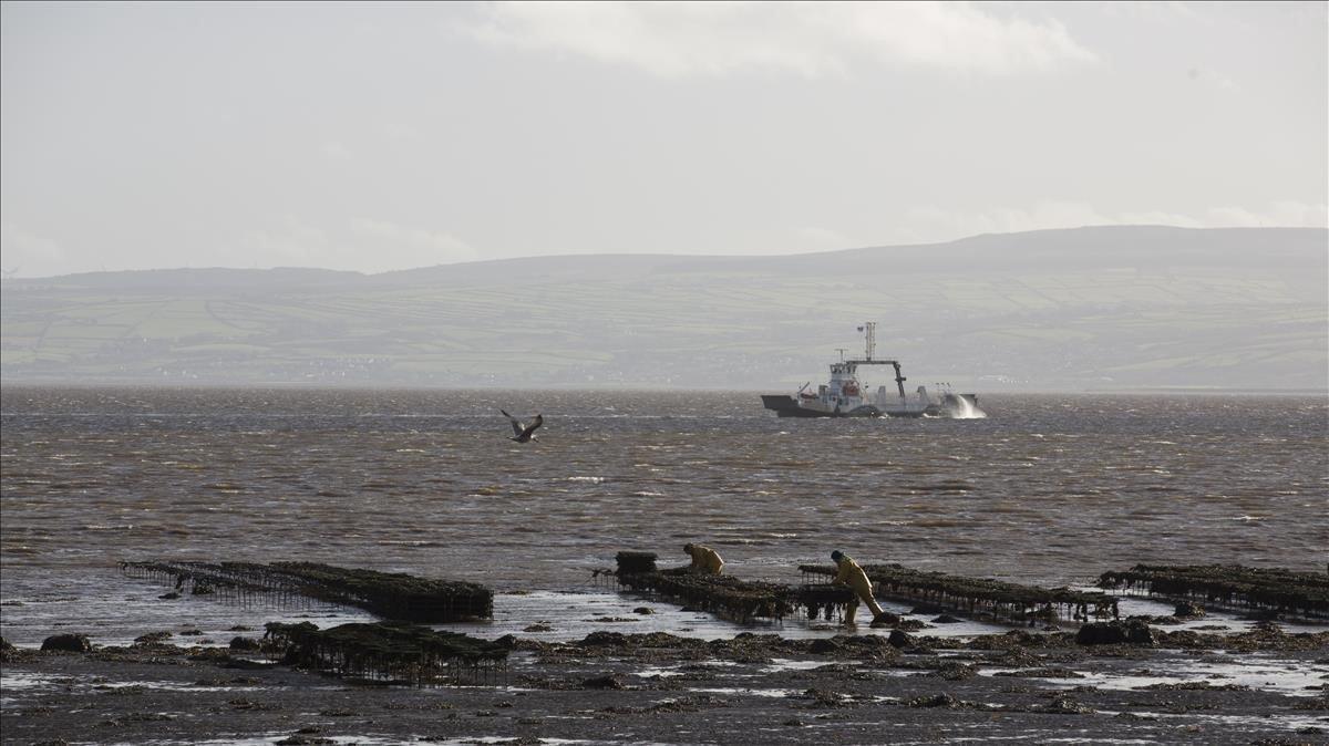 Un barco de pesca en aguas entre la República de Irlanda e Irlanda del Norte.