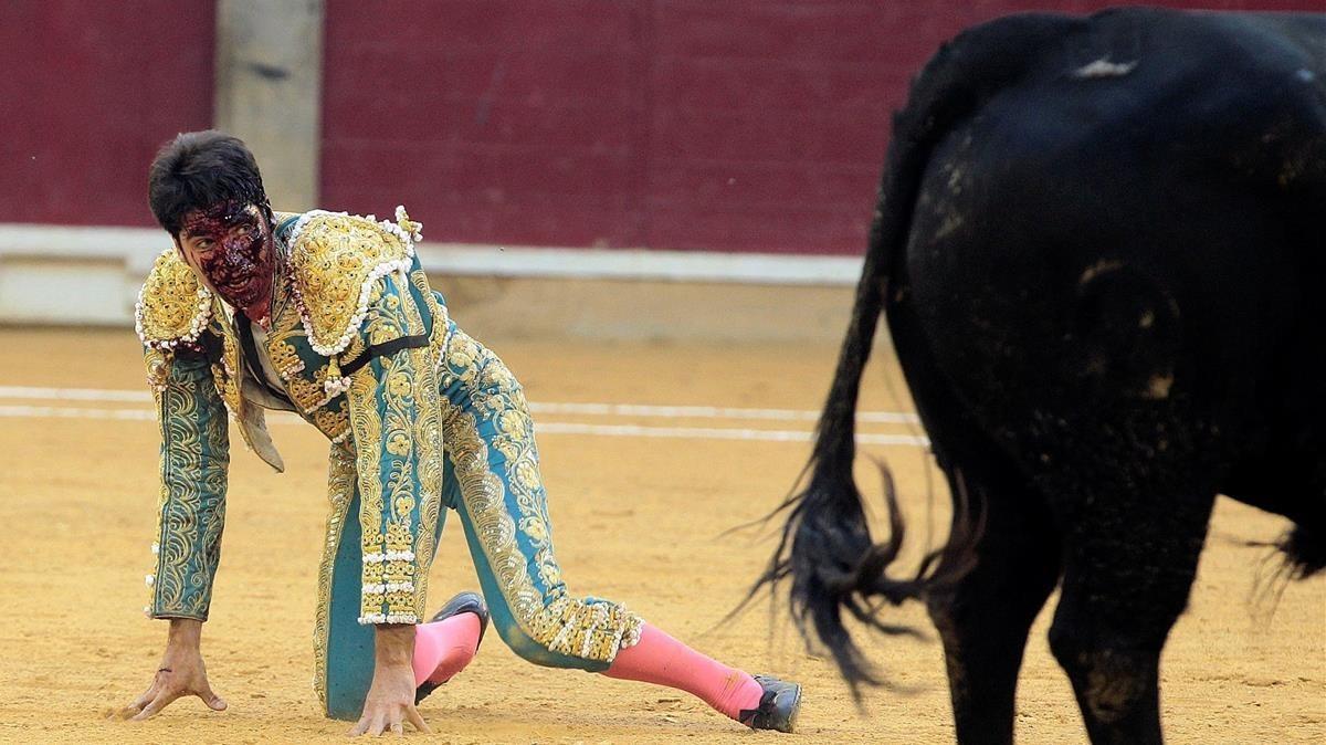 El diestro Cayetano Rivera es cogido durante la corrida de la Feria del Pilar de Zaragoza.