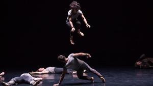 'En masse', un circ al Palau de la Música
