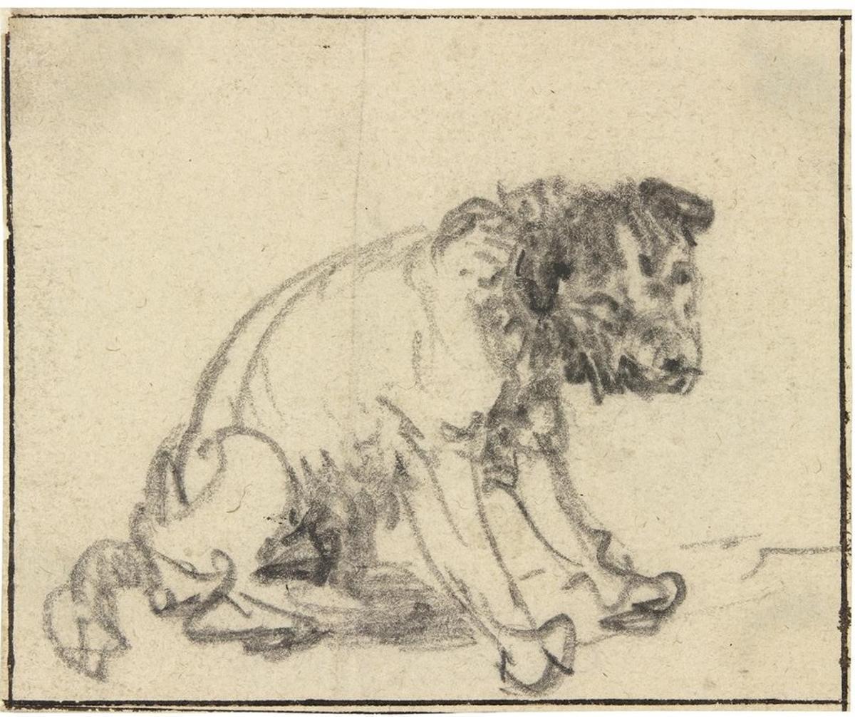Dibujo de un perro realizado por Rembrandt hallado en los fondos del museo Herzog Anton Ulrich, atribuido hasta ahora el pintor de animales Johann Melchior Rosso.