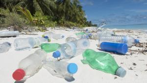 Se estima que alrededor del 90% de los residuos plásticos que llegan por los ríos a los océanos provienen de los 10 ríos más grandes del mundo.