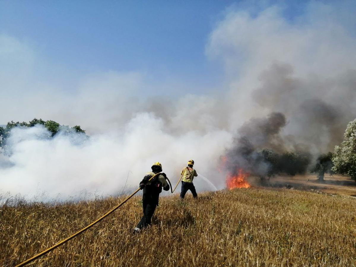 Los bomberos apagan un incendio en la Pobla de Massaluca