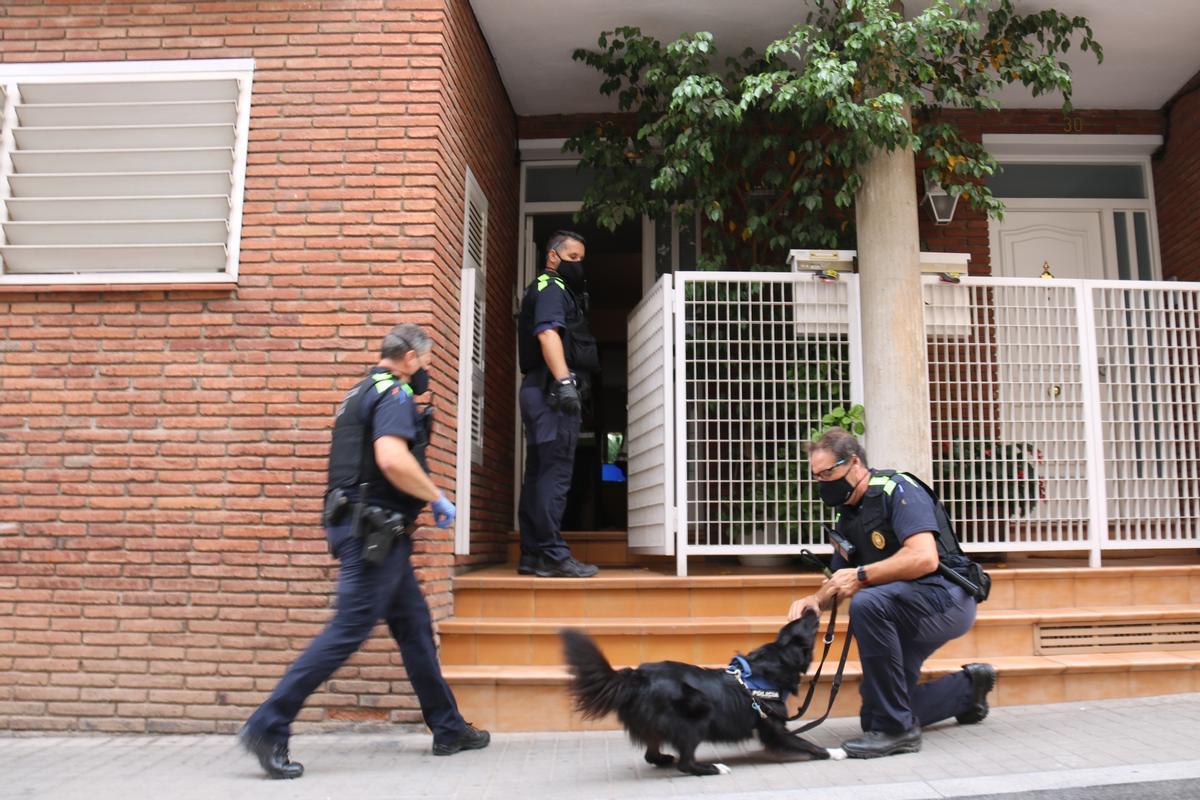 Policía Municipal y un perro de la unidad canina delante de un domicilio de la calle Sant Oleguer de Sabadell durante el registro de esta mañana