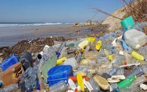 Basura y desechos plásticos se acumulan en las playas y oceanos.