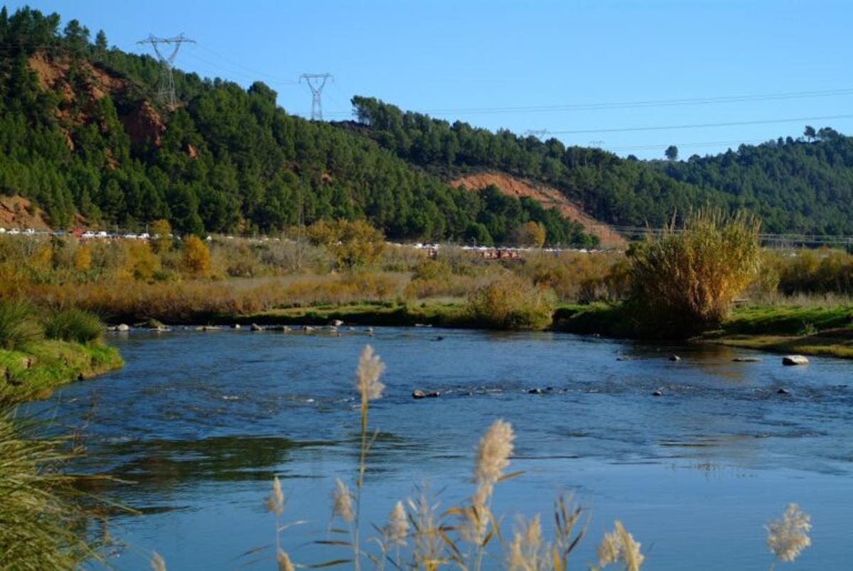 Continúa la recuperación el río Llobregat con actuaciones en Sant Vicenç dels Horts, Sant Boi y Santa Coloma de Cervelló