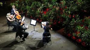 Un momento del primer concierto con plantas como público celebrado en el Liceu, el 22 de junio.