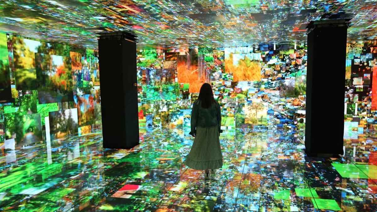 La Casa Batlló presenta '10D Experience'.