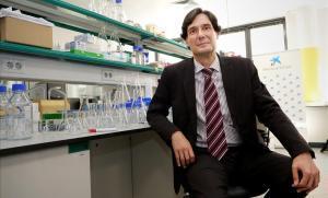 Manuel Serrano trasllada de Madrid a Barcelona les seves investigacions sobre cèl·lules mare