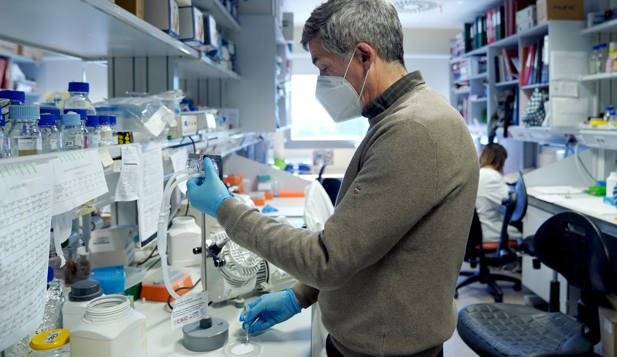 Antonio Alcamí, virólogo del Centro de Biología MolecularSevero Ochoa.