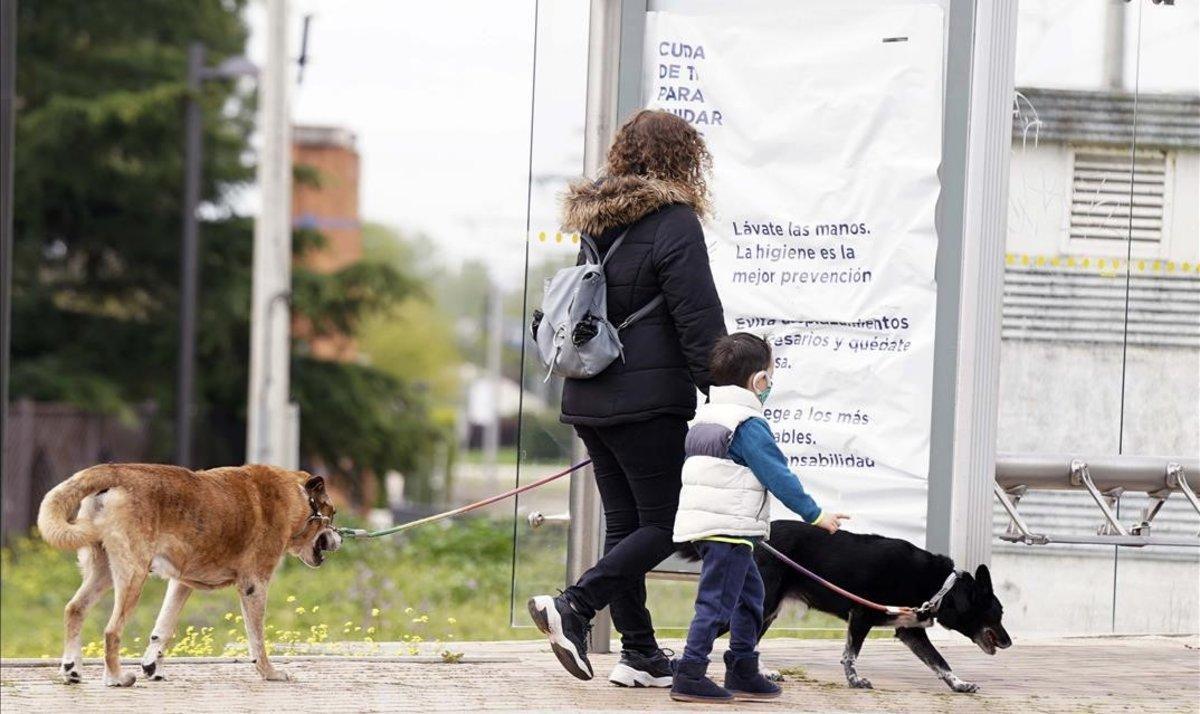 Una mujer pasea con su hijo y sus perros.