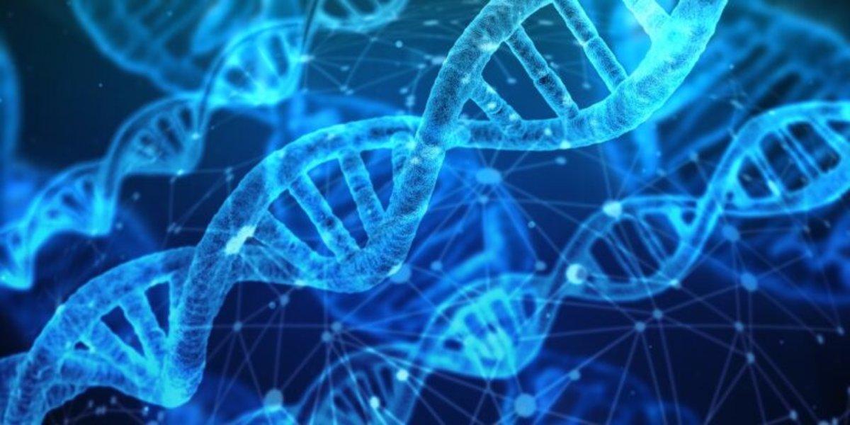Primer borrador de la secuencia del proteoma humano