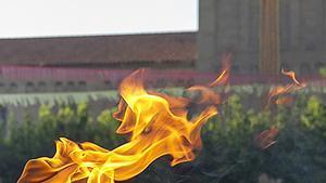 Flama del canigó