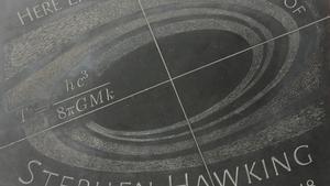 Hawking ja descansa a Westminster, entre Darwin i Newton
