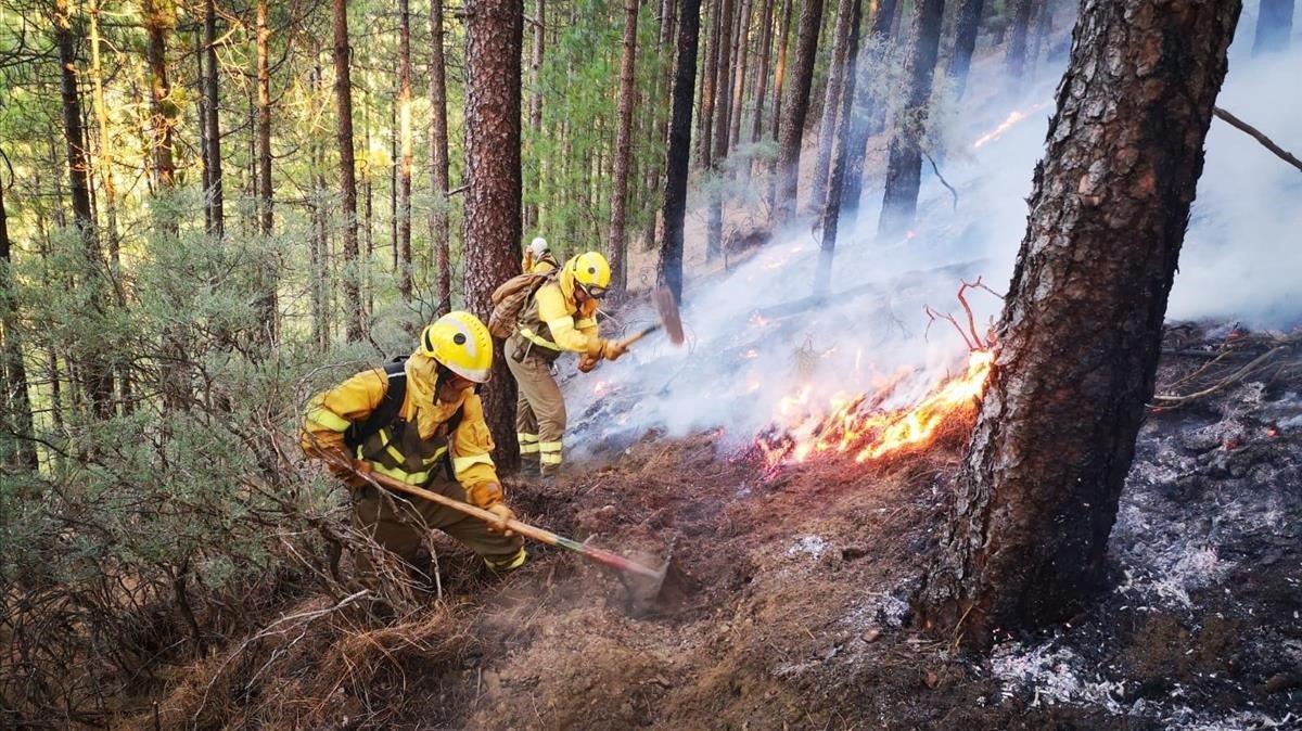 Labores de extinción en el incendio de Gran Canaria.