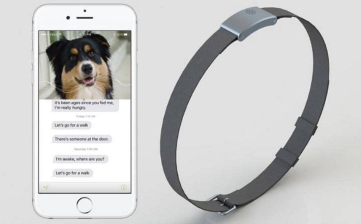 WhatsYapp o mensajes de tu perro en el móvil
