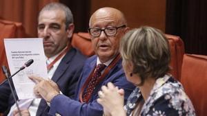 Marcelino Martín-Blas, en el Parlament.