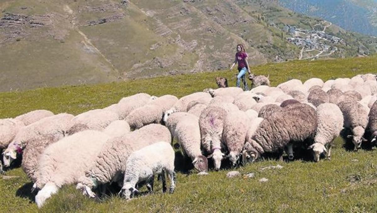 Anna Plana: «'En un año lo dejas', decían los pastores»