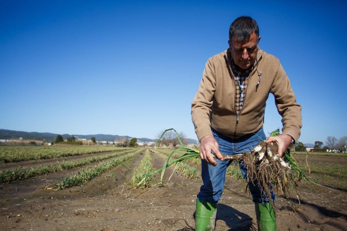Son muchos los problemas a los que se enfrentan los agricultores.