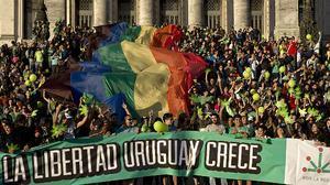 La marihuana se legaliza en Uruguay