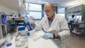 El investigador Jesús Rodríguez en el laboratorio de microbiología de la Universitat de València