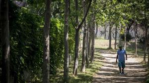 El Camino de Ronda de Trinitat Vella se consolida como un nuevo eje para practicar deporte al aire libre.