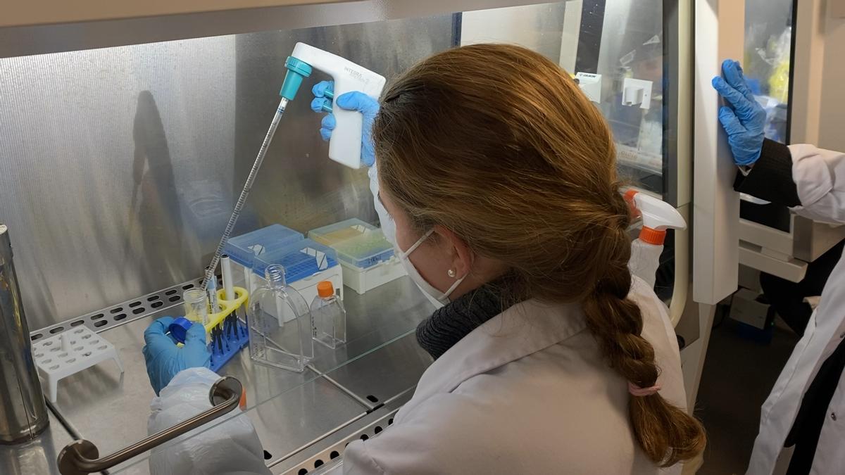 Así es el laboratorio donde se investiga una vacuna contra el covid-19 'made in Barcelona'