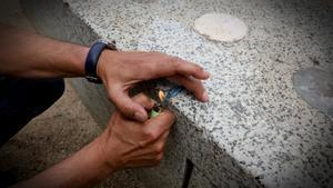 Mor d'un atac al cor a l'espantar-se per un petard a València