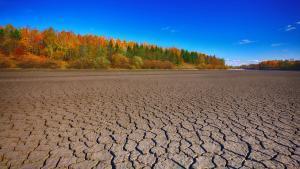 Terreno afectado por la sequía.