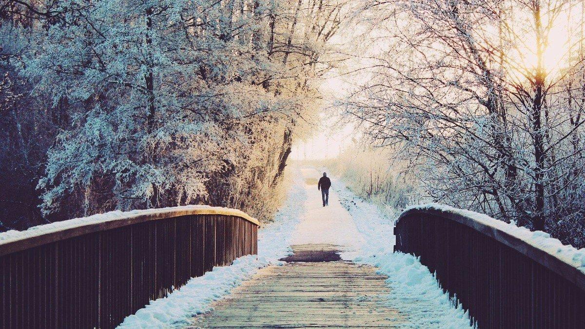 Paisaje nevado propio del invierno.